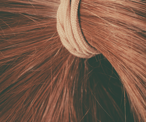 Close-up image from a ponytail