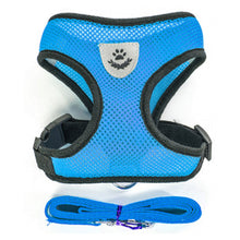 Small Dog and Cat Pet Harness and Leash Set