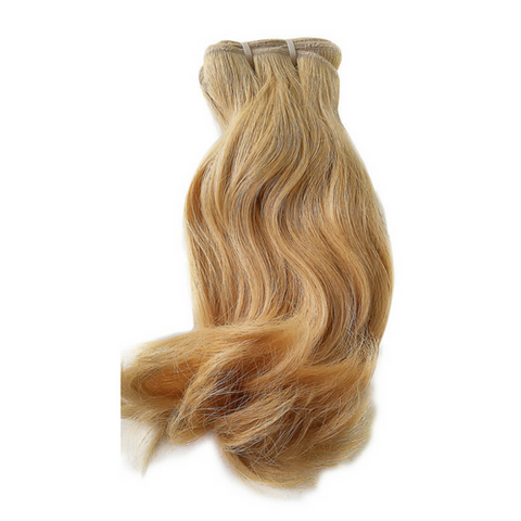 Burmese Straight Blonde