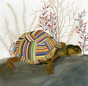 The Tortoise Prints by Carrie Marill