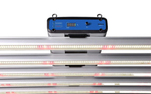 ThinkGrow Grow Lights ThinkGrow Model-H 630 Watt LED Grow Light