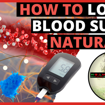 Insulin Resistance Explained | How to Lower Blood Sugar Naturally