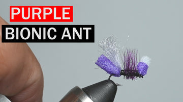 Purple Bionic Ant, A Lance Egan Fly Pattern