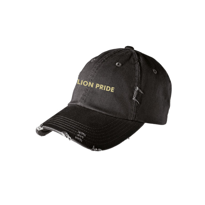 Delaware Lions - Distressed Hat