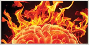 Brain On Fire and The Emotional Changes In MS