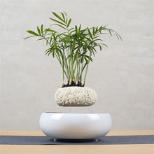 Levitating Air Bonsai Pot Planters Magnetic Decor