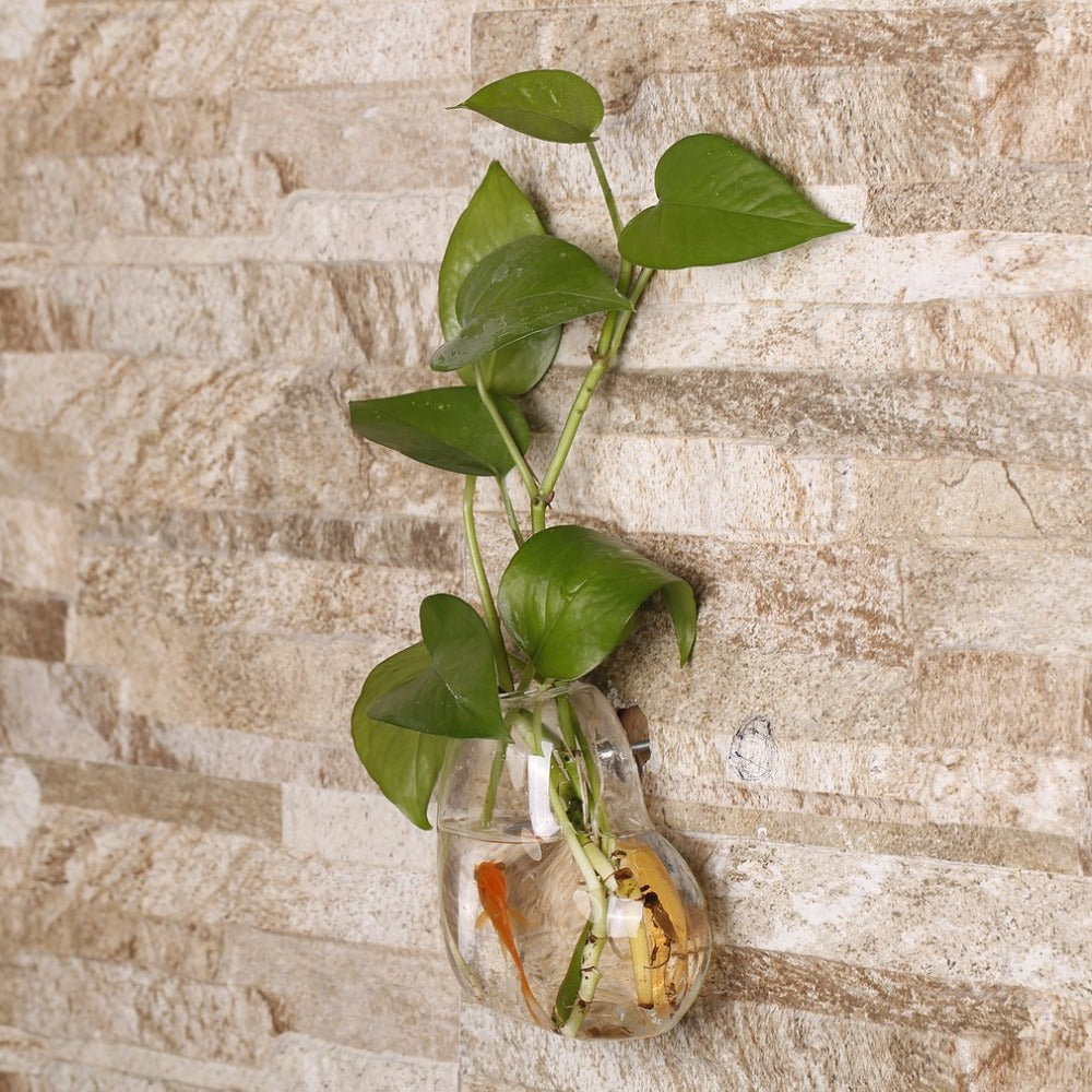 Heart Shaped Transparent Wall Hanging Vase Hydroponic Container
