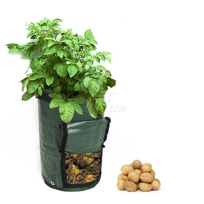 Organic Composting Vegetable Bag Growing Bag