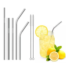 Natural Elements 5pc Stainless Steel Metal Reusable Drinking Straws Set