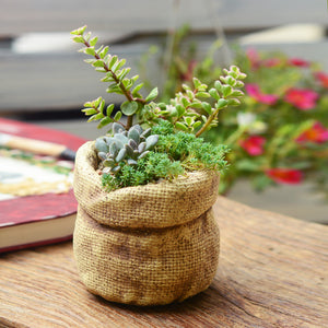 Natural Elements Linen Bag Ceramic Flower Pots Planters