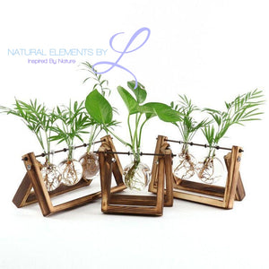 Natural Elements Wooden Stand Glass Terrarium Hydroponics Planter Vase