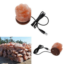 Natural Elements Himalayan Crystal Flower Rock Salt Air Purifying Lamp