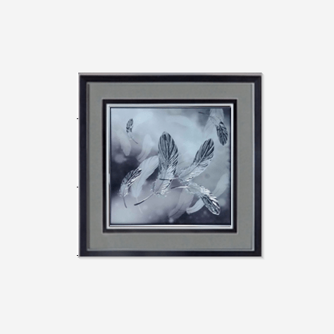 Feather Wall Art with Frame and Glass 65x65cm