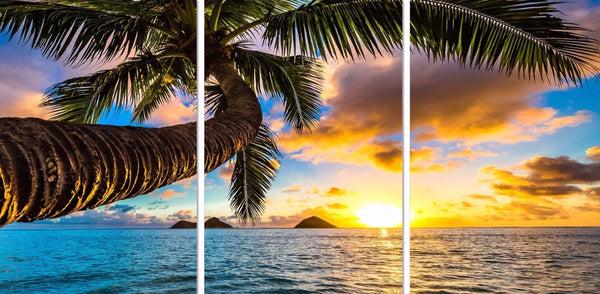 Sunset Beach Coconut Tree Acrylic Wall Art Set of 3 60x90cm