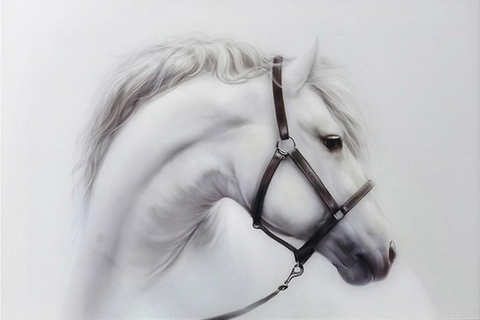 White Horse Acrylic Wall Art 120x80cm