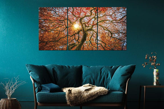 Giant Autunm Tree Set of 3 120X80cm Acrylic Printed Painting Adore Home Living