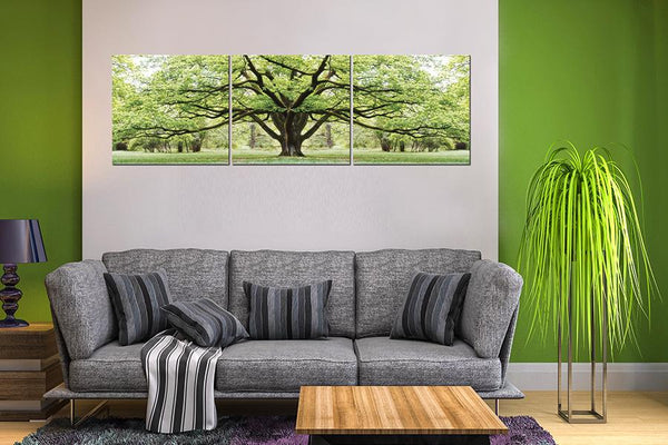 Giant Summer Tree Set of 3 Acrylic Printed Painting Adore Home Living