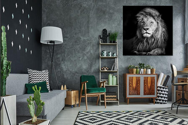 Acrylic Painting: Beautiful Lion Romeo 100x100 Acrylic Printed Painting Adore Home Living Perth Furniture Store, Homewares and Decors