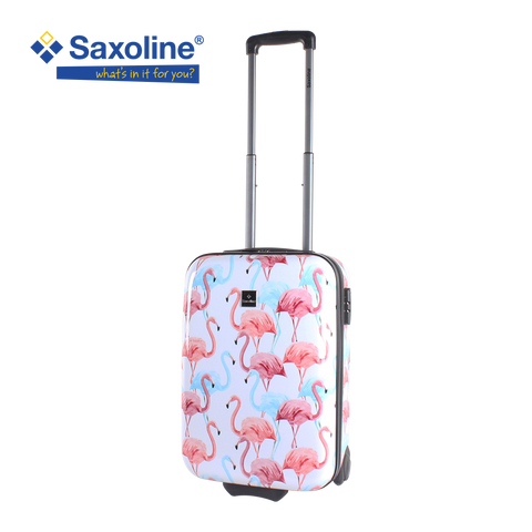 hard hand carry Saxoline with flamingo print in HK