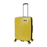 recognizable yellow Nat Geo luggage