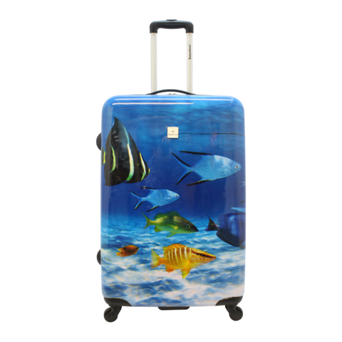 Saxoline Fish Tank hard case L - 1340H0.71.09