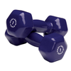 Body Solid Vinyl dumbbells 7lb blue Simpsons Fitness Supply