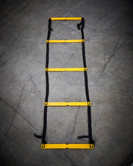 Commercial Agility Ladder