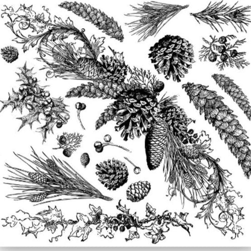 *NEW Evergreen IOD Decor Stamp