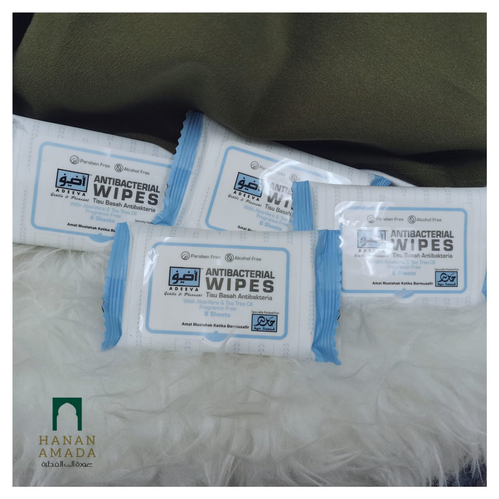 Wet Wipes (Pack of 4)