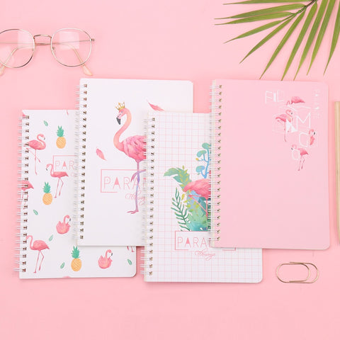 Flamingo Surprise! Journal