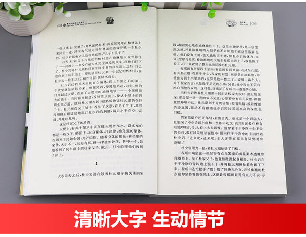 The Implication of Rain(Chinese edition):Pure Aesthetics series by Wenxuan Cao曹文轩纯美小说:狗牙雨