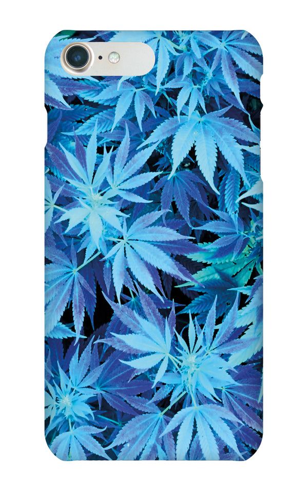 Blue weed case