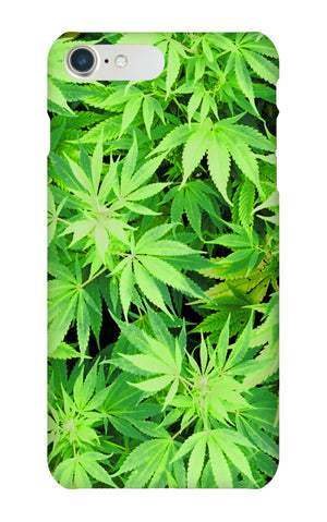 Green weed case