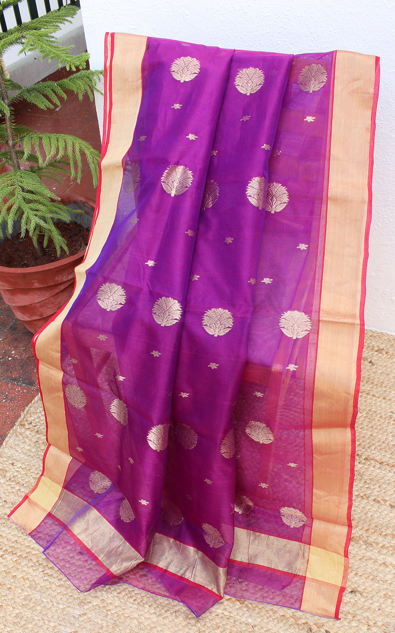 Purple Chanderi Silk Organza Handloom Saree with Red Pure Silk Blouse Piece