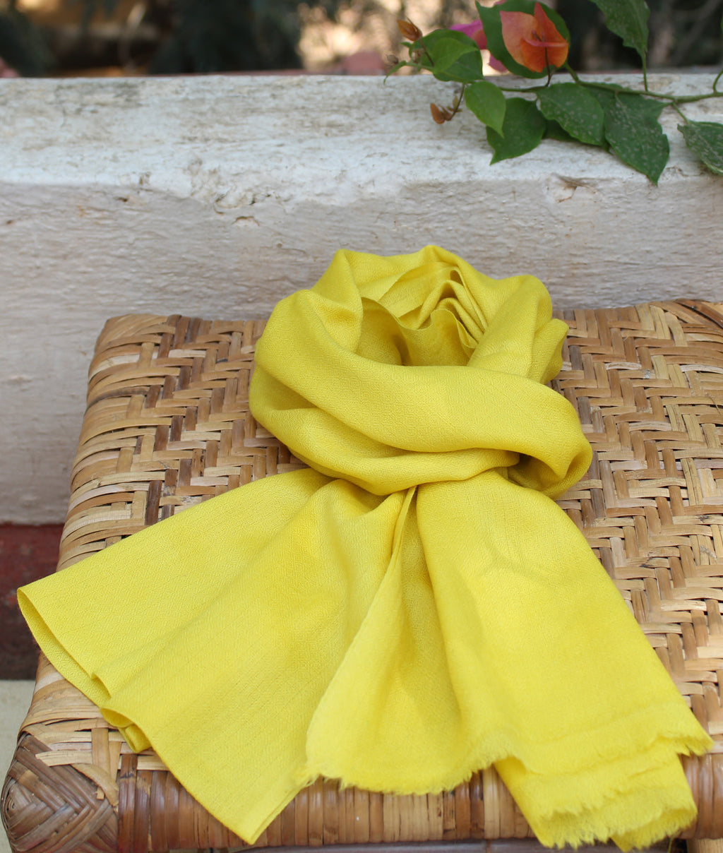 Yellow Pure Kashmiri Wool and Silk Woven Scarf (72 x 15 inches)