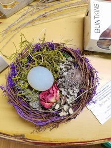Bird Nest and Magic Egg
