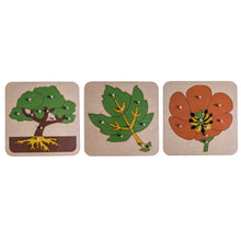 Load image into Gallery viewer, 3 Botany Puzzles My Montessori Home South Africa