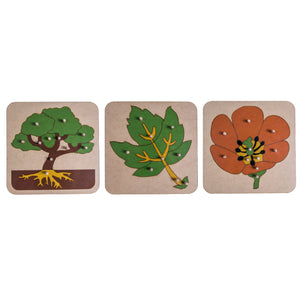 3 Botany Puzzles My Montessori Home South Africa