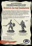 "Dungeons & Dragons - ""Dungeon of the Mad Mage"" Zalthar & Dezmyr Shadowdusk (2 Fig)"