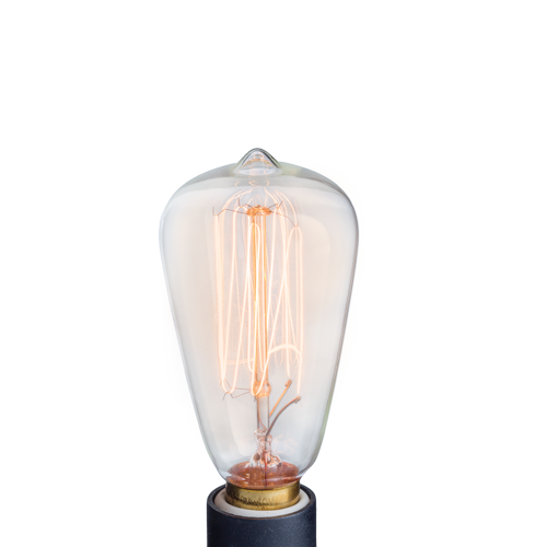 Bulb Edison Pluggable Melt Burner