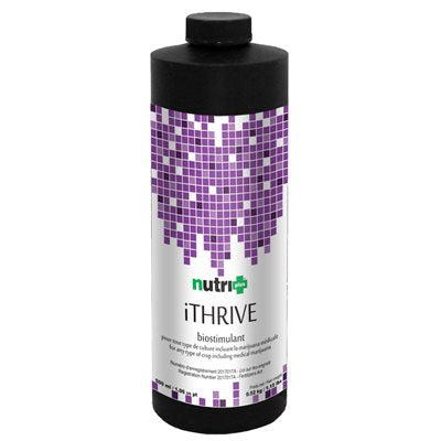 NUTRI+ iTHRIVE 1L (1)