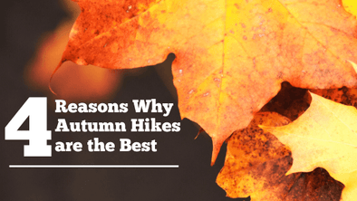 Four Reasons Why Autumn Hikes are the Best