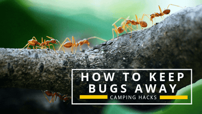 Camping Hacks: Tips and Tricks on How to Keep Bugs Away