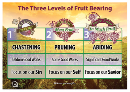 The Three Levels of Fruit Bearing Chart