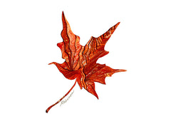 Copper Maple Notecard