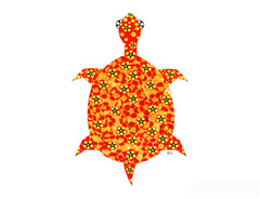 Long Life Turtle Notecard