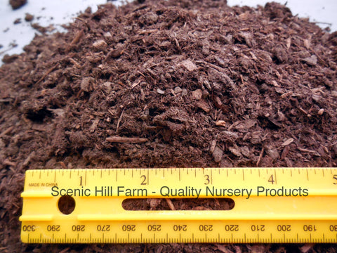 Aged Fine Fir Bark for Bonsai/Succulent/Cactus and Seed Starting Soil Mix