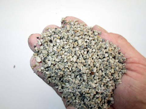 "Propagation Grade Pumice - 1/8"" - 1/128"" - Seed Starting - Cuttings - Potting Soil"