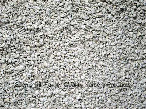 "Horticultural Grade Pumice  - 3/8"" - 1/16"" For Soil Mix, Bonsai & Cactus"