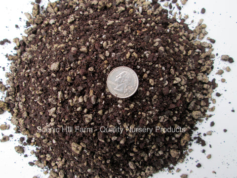 Spined Succulents & Cactus Soil Mix - Custom Blend - Proper Drainage